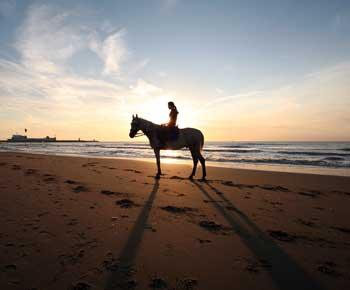 Riding a Horse Along The Shore at Sunset